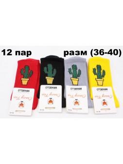 Носки осень - sc608-32186
